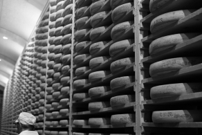 41 meilleures images du tableau Fromage | Cheese, Retail ...