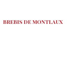 Cheeses of the world - Brebis de Montlaux