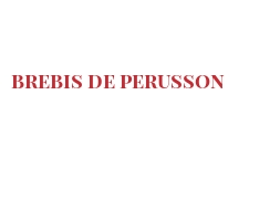 Cheeses of the world - Brebis de Perusson