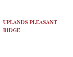 Cheeses of the world - Uplands Pleasant Ridge