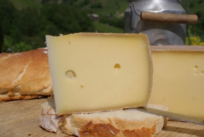 Cheeses of the world - Cousin