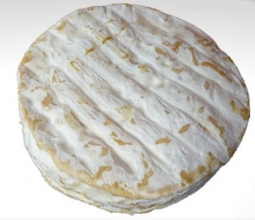 Cheeses of the world - Brebis de la Cavalerie