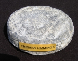 Cheeses of the world - Cendré de Champagne