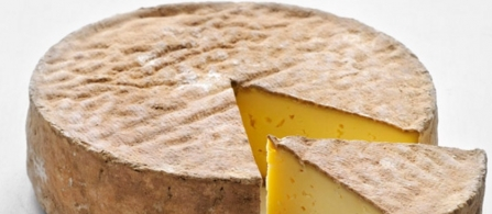 Cheeses of the world - Bargkas - Tomme