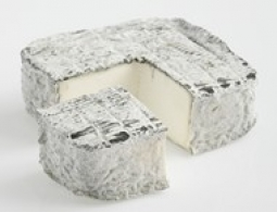 Cheeses of the world - Pavé Blesois