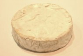 Cheeses of the world - Bougon