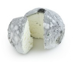 Cheeses of the world - Wabash Cannonball