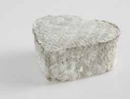 Cheeses of the world - Coeur de Touraine