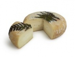 Cheeses of the world - A Filetta