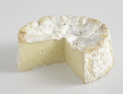 Cheeses of the world - Camembert de Normandie