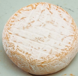 Cheeses of the world - Abbaye de Chambarand