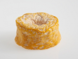 Cheeses of the world - Langres