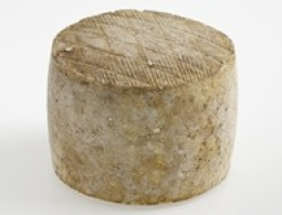 Cheeses of the world - Ardi-Gasna