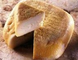 Cheeses of the world - Niolo