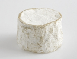 Cheeses of the world - Chaource