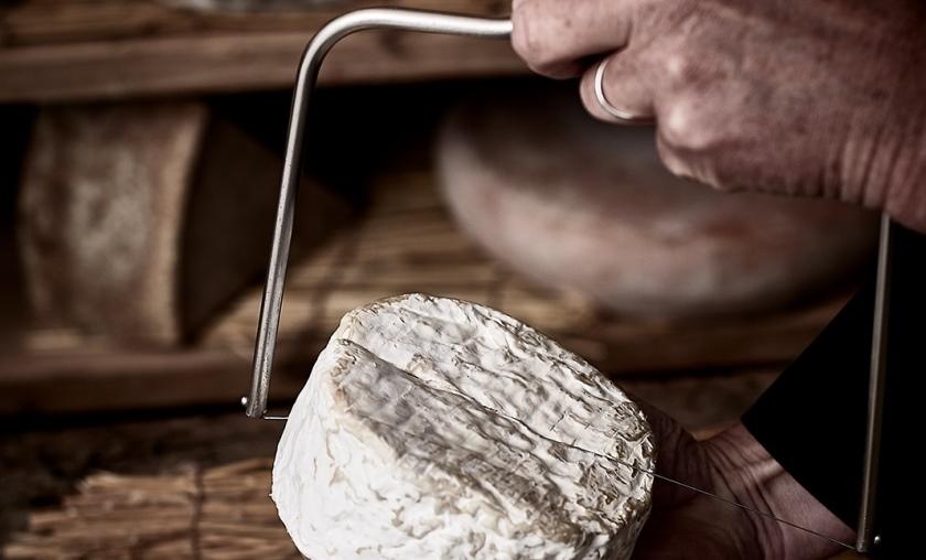 devenir fromager via un cqp  un cap ou un bts mco