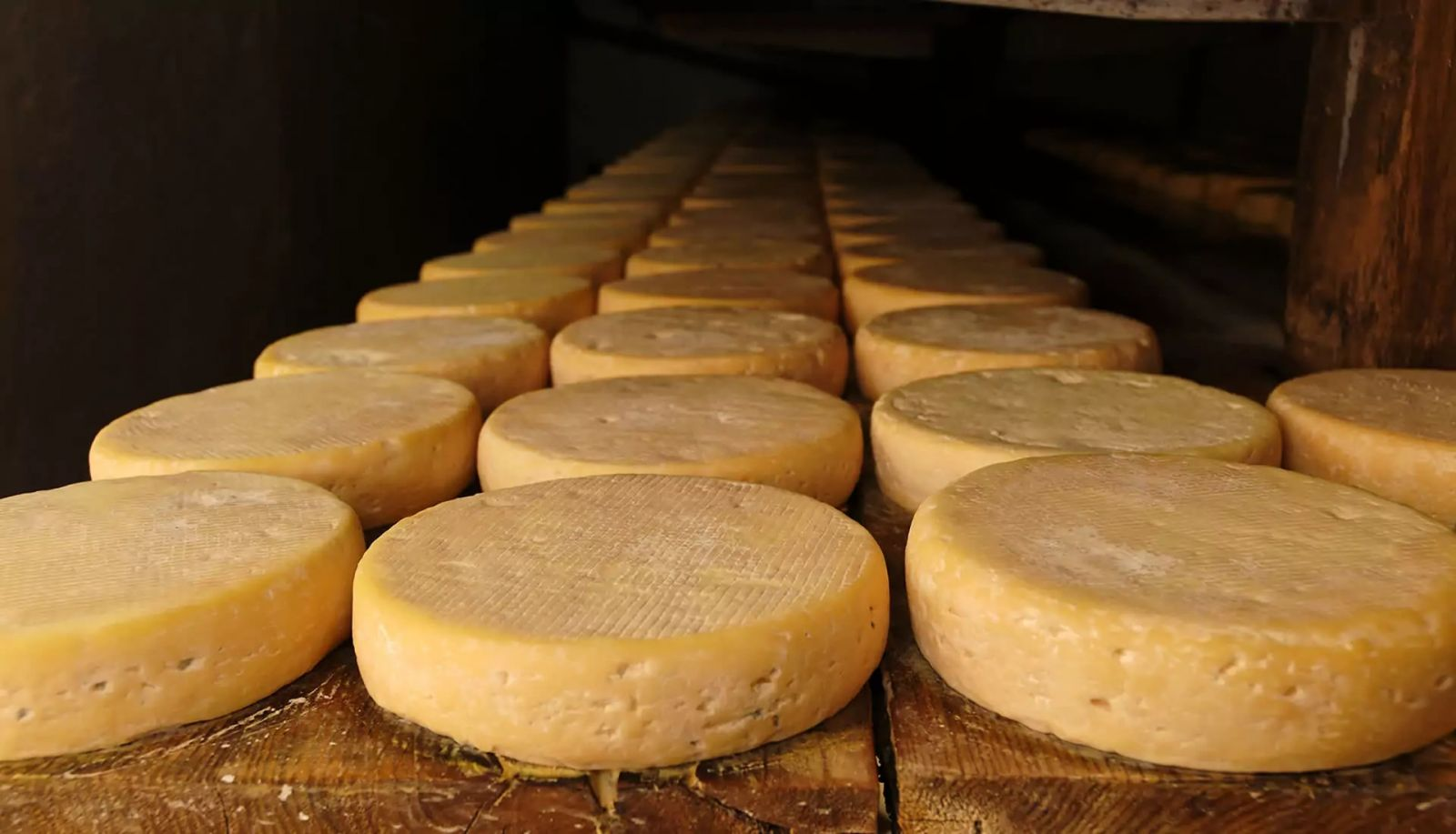 Cheese from Alsace